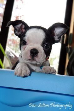 omg....such a cutie pie!!