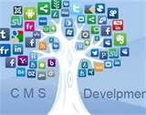We offer custom CMS development services and solutions to facilitate web content management by integrating a host of features and functionalities to the platform so that you can manage your website or blog easily and without any external effort.