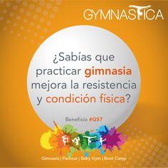 Recuerda que este verano tendremos cursos de #Gimnasia y #Parkour para tus hijos. Pide informes al 9688 9113 y 9131 6203 | info@gymnastica.mx.  #BabyGym #BootCamp