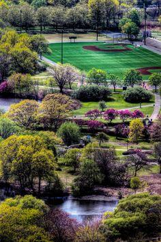 A beautiful park in Boston, MA