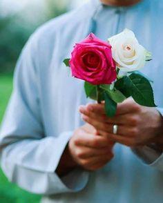 Arab World, Boys Dpz, Rose, Flowers, Plants, Blush, Pink, Rouge, Plant