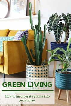 Awesome Plants in baskets! Such a pretty eclectic living space, gorgeous boho feel. The post Plants in baskets! Such a pretty eclectic living space, gorgeous boho feel. Love… appeared first on 99 Decor . Eclectic Living Room, Eclectic Decor, Living Room Decor, Living Spaces, Eclectic Style, Dining Room, Dining Table, Retro Home Decor, Easy Home Decor