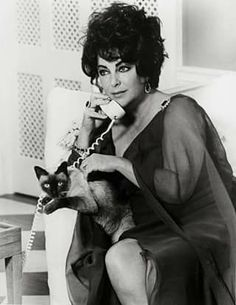 The great #Actress #LizTaylor and her cat. ||| #ActressHollywood #MemoryHollywood #Hollywood