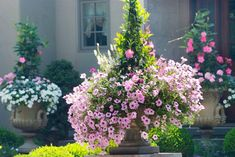 french country landscape designs | French Country Estate - traditional - landscape - philadelphia - by ...