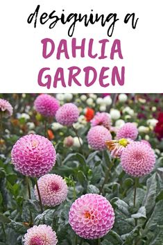 Plan and plant a dahlia tropical flower garden Dahlias are SO worth it! They're not as hard to grow as you may think. Simple tips to grow a HUGE CUT flower garden. Design ideas, decor, landscaping outlines and plans. Cut Flower Garden, Flower Garden Design, Flower Farm, Dahlia Garden Ideas, Flowers For Cutting Garden, Cut Garden, Small Flower Gardens, Flower Garden Plans, Flower Plants