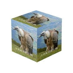 V Is For Vulture Cube Photo Cubes, Images And Words, Vulture, Cleaning Wipes, Memories, Prints, Color, Memoirs, Souvenirs