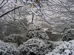 Snow covered Huangzhou