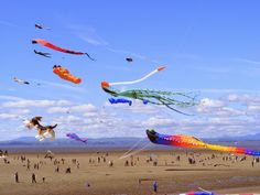 The eighth year of the Parksville B.C. Lions International Kite Fest, celebrating the art of the kite. Took place at Parksville's Community Park, July 18 - 19th, 2015, with kite flyers of all persuasions gracing the skies with their colourful creations.  So much fun to see!