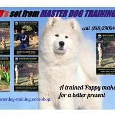 Instructional Dog Training Videos - 5 DVD Set in English FROM MASTER DOG TRAINING http://masterdog-training.com/shop/