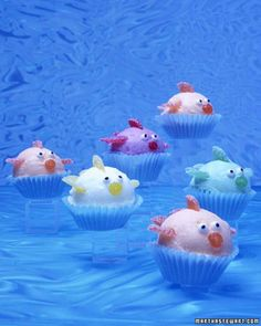 School of Sherbet Fish  ~  So cute!