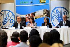 La FAO busca apoyo para reducir el hambre y la pobreza en Honduras  - http://notimundo.com.mx/mundo/la-fao-busca-apoyo-para-reducir-el-hambre-y-la-pobreza-en-honduras/19564