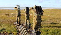 Тазовский район и ЯНАО Ямальские волонтёры завершили осенний этап экологических мероприятий на острове Белый