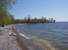 $289,000 - Lake Ontario Waterfront 54 Acres, Land for Sale by Brownville in Jefferson County, New York 13634 - LANDFLIP.com