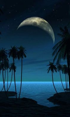 Beach at Night iPhone Wallpaper War Photography, Types Of Photography, Beautiful Moon, Beautiful World, Beach At Night, Shoot The Moon, Moon Pictures, Montage Photo, Beach Scenes