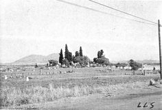 Said to have been taken in the 1950s, this photograph of the historic Pacheco Cemetery was located by Christine Williams (FPC), and provides an excellent example of how the Pacheco Cemetery likely looked from the time of its establishment in the 1850s or 1860s