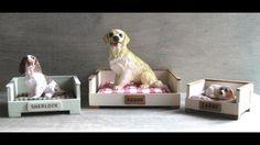 Magnificent 108 Best Tutorials Miniature Pet Shop Dogs Images In 2019 Beutiful Home Inspiration Truamahrainfo
