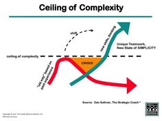 EP How to Get Your Time and Freedom Back by Breaking Through the Ceiling of Complexity - Carrot Knowledge Management, Risk Management, Business Management, Strategic Planning Process, Systems Thinking, Portfolio Management, Skills To Learn, Earn Money From Home, Self Improvement Tips