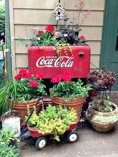 Antique Coke machine filled with plants