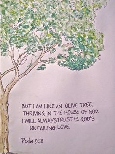 """Psalm 52:8 - """"But I am like an olive tree, thriving in the house of God. I will always trust in God's unfailing love."""""""