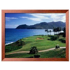 Art.Com Assorted Kauai Hawaii Usa Framed Photographic Print (1,075 CNY) ❤ liked on Polyvore featuring home, home decor, wall art, assorted, framed photography wall art, photographic wall art, photography wall art, framed wall art and brown wall art