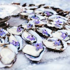 Friday, you make me feel like the oyster is my world... // : @the_lane #edibleflowers #friday #wordplay #oysters