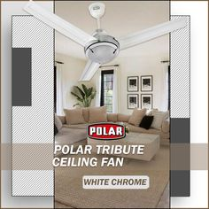 Make your living space uber-cool and ultra modern with this premium ceiling fan from Polar. #Polar #Fan #CeilingFan #PremiumCeilingFan #Tribute