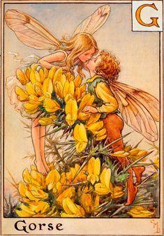 Fairy Clipart, Garden Tattoos, Fairy Drawings, Autumn Fairy, Cicely Mary Barker, Fairy Pictures, Vintage Fairies, Butterfly Fairy, Flower Fairies