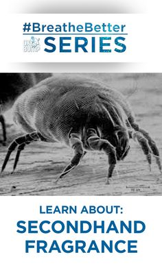 Dust mites are a common allergy trigger that make for poor indoor air quality. They live in the dust in our homes, and in our bedding, clothing and rugs. Approximately 40,000 can live on a single speck of dust, so you can imagine the impact that they can have on your respiratory system. It is the feces they produce roughly 20 times per day that is the trigger for breathing difficulties and asthma. Read more..  #dustmites #breathebetter #allergies #asthma