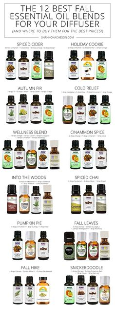 I LOVE the smell of fall & I prefer essential oils in a diffuser over a candle or plugin. Here are the Best Fall Essential Oil Blends For Your Diffuser.