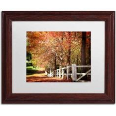 Trademark Fine Art Autumn Moods Canvas Art by Beata Czyzowska Young, White Matte, Wood Frame, Size: 11 x 14