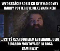 Memy z Harrego Potter'a ; w Losowo- # Losowo # amreading # books # wattpad Fantastic Beasts And Where, Film Books, Harry Potter Memes, 5 W, Hogwarts, Fun Facts, Haha, Funny Memes, Wattpad