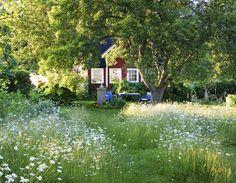 Swedish cottage in summer.