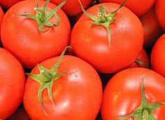 Tomatensoep maken is wel heel eenvoudig met dit recept. Weinig ingrediënten maar wel lekker vers met echte verse tomaten. Je kunt er natuurlijk nog een heleboel ingrediënten aan toevoegen maar dit is wel de basis voor een lekkere en gezonde tomatensoep. Een overzicht van alle tomatensoep recepten kan je vinden via deze link Waarom is [...]