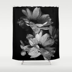 Customize your bathroom decor with unique shower curtains designed by artists around the world.  #daisies, #daisy, #flowers, #rain, #drops, #water, #blackandwhite, #bw,  #showercurtain