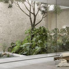 Estilos - Hazlo con Cerámicos Luz Natural, Terracota, Oversized Mirror, San Francisco, Plants, Home Decor, Rustic Style, Aging Metal, Grey And Beige