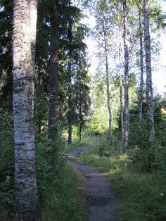 Polku Finland, Country Roads, Plants, Plant, Planets