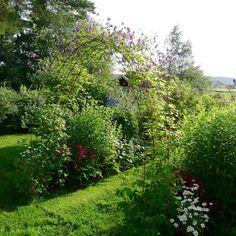 Mias Landliv: The garden