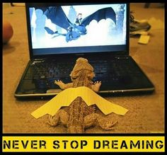 Keep on dreaming and your dreams will come true!!!