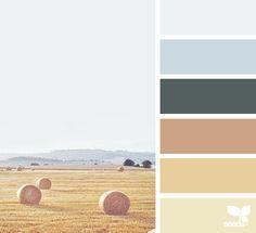 { color view } image via: @maria_minimal  #palette #pallet #colour #colourpalette #design #seeds #designseeds