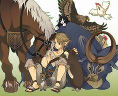 Link, Twilight Princess menagery