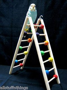 Bird Toy LADDER STAND GYM Budgies Bells Rings Exercise Activity Fits S-M Parrots