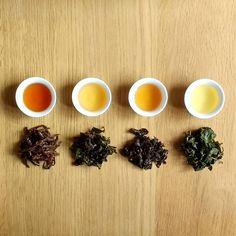 Final round of Oolong tasting session! Remember real tea has (loose) leaves . #caicaitea #teaaddict #tealover #tea #teatime #teastagram #instagood #picoftheday #oolongtea #taiwanesetea #bluetea #londonfoodie #london #treatyourself #healthyfood #igers #igerslondon #startup #entrepreneur