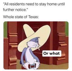 Today's Morning Mega Memes Crazy Funny Memes, Really Funny Memes, Stupid Memes, Funny Relatable Memes, Haha Funny, Funny Texts, Funny Jokes, Hilarious, Funny Stuff