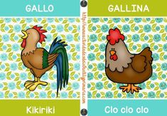 decora tu aula Tarjetas onomatopeyas de animales -Orientacion Andujar Winnie The Pooh, Rooster, School, Spanish, Album, Kids Songs, Animal Cards, Kid Chores, Cards