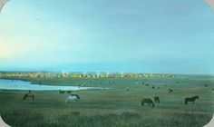Blackfeet tribal camp with grazing horses. Montana, early 1900's.-vintage everyday: 23 Beautiful Color Photos of Native Americans in the Late 19th and Early 20th Centuries