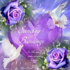 sunday blessings quotes and images Blessed Sunday Morning, Happy Sunday Quotes, Sunday Love, Blessed Quotes, Morning Blessings, Monday Morning, Morning Quotes, Sunday Greetings, Sunday Wishes
