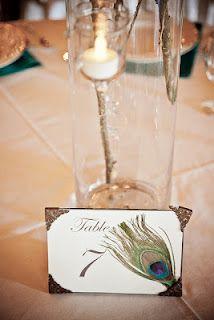 Peacock Wedding Feather