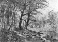 Author: Witold Kubicha. Pencil drawing inspired by the image of Ivan Shishkin.