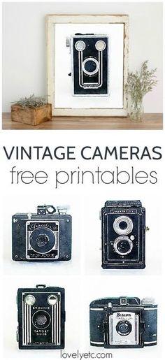 Free Printable Art: Watercolor Vintage Cameras