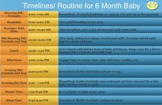6 Month Baby Food Chart / Indian Food Chart for 6 Months old baby with Quantity . - 6 Month Baby Food Chart / Indian Food Chart for 6 Months old baby with Quantity & Timings – Devis - 6 Month Baby Food, 6 Month Old Baby, Food Baby, Nutrition Chart, Diet Chart, Beechnut Baby Food, Indian Baby Food Recipes, Baby Recipes, Baby Food Schedule